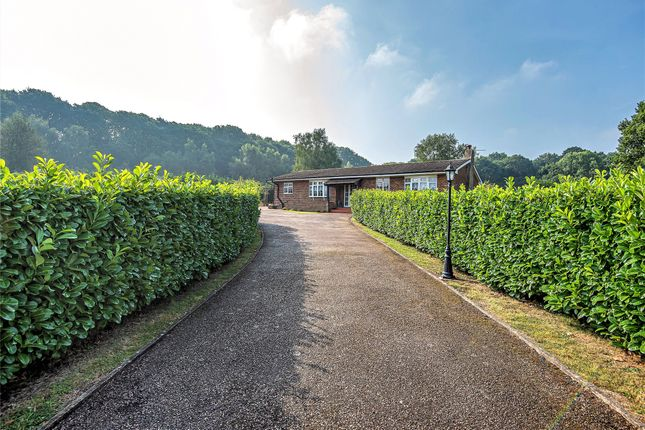 Thumbnail Bungalow for sale in Birchwood Lane, Knockholt, Sevenoaks, Kent