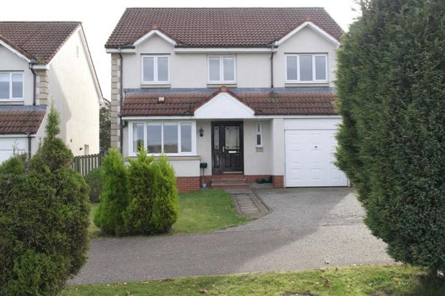 Thumbnail Detached house to rent in Hamilton Avenue, Tayport