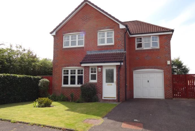 Thumbnail Detached house to rent in Spruce Way, Drumsagard, Cambuslang, Glasgow