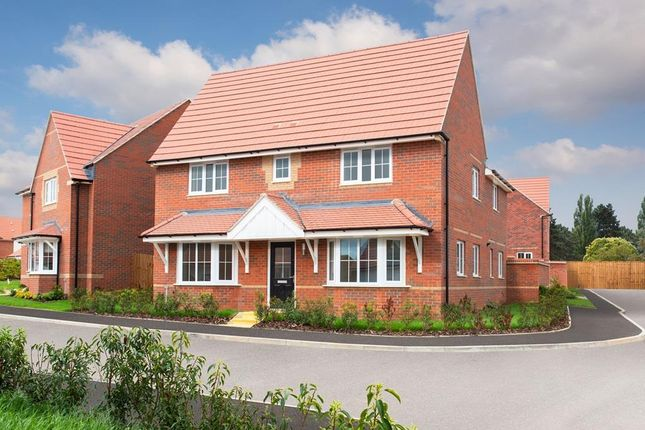 "Thumbnail Detached house for sale in ""Alnmouth"" at Livingstone Road, Corby"