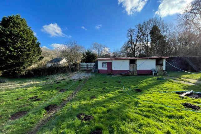 Thumbnail Farm to let in Grove Farm Stables, Newport