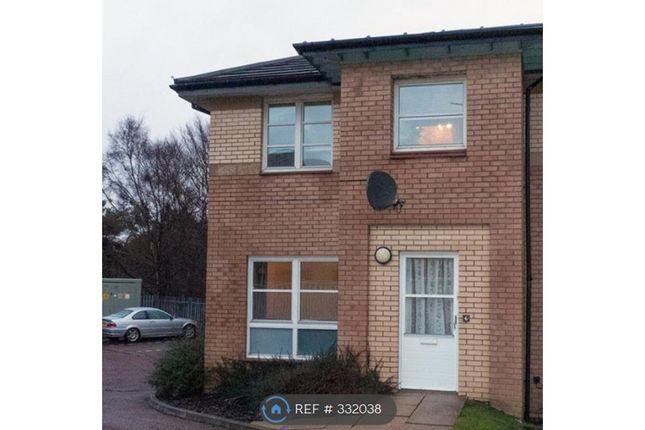 Thumbnail Terraced house to rent in Glenmavis Court, Carluke