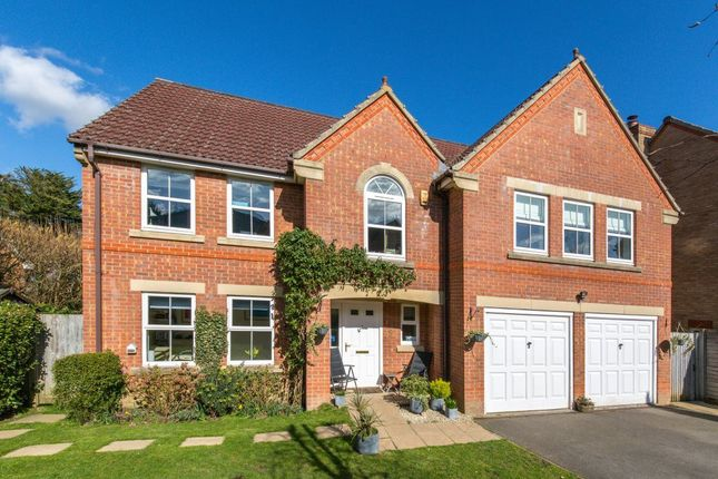 Thumbnail Detached house to rent in Timberley Gardens, Ridgewood, Uckfield
