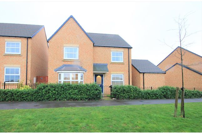 Thumbnail Detached house for sale in Kingfisher Drive, Houghton Le Spring
