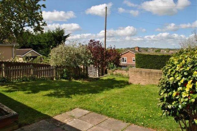 Thumbnail Bungalow to rent in Galmington Road, Taunton