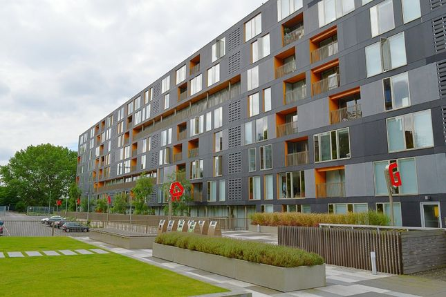 Thumbnail Flat to rent in Saxton Gardens, The Avenue