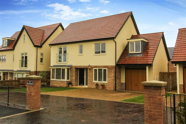 Thumbnail Detached house for sale in Morwick Road, Warkworth, Northumberland