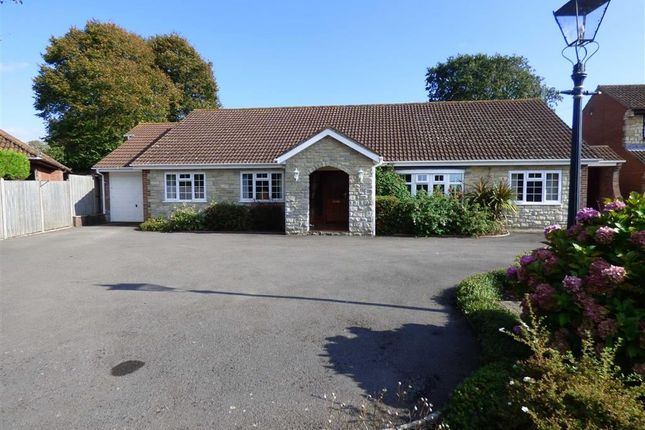 Thumbnail Detached bungalow for sale in The Spinney, Lorton Lane, Weymouth