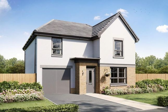 """Thumbnail Detached house for sale in """"Dalmally"""" at Countesswells Park Place, Countesswells, Aberdeen"""