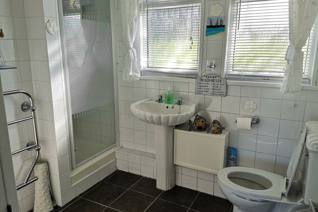 Shower Room of 241 Norton Park, Dartmouth TQ6