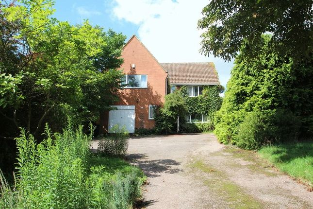 Thumbnail Detached house for sale in Elm Grove Lane, Norwich