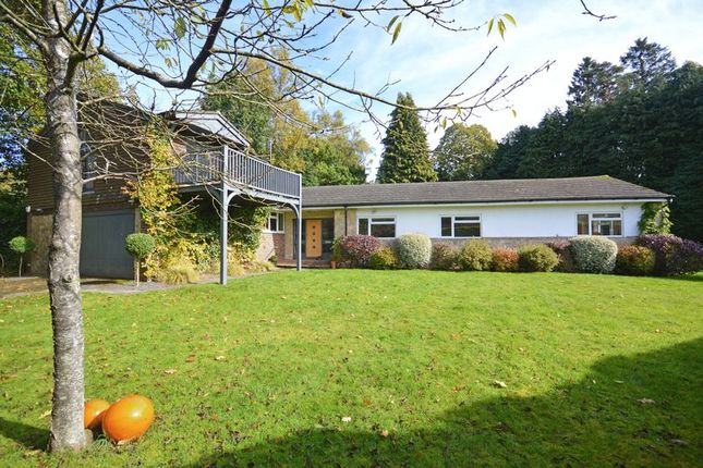 Thumbnail Detached bungalow for sale in Pine Bank, Hindhead