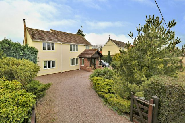 Thumbnail Detached house for sale in Haggars Lane, Frating, Colchester, Essex