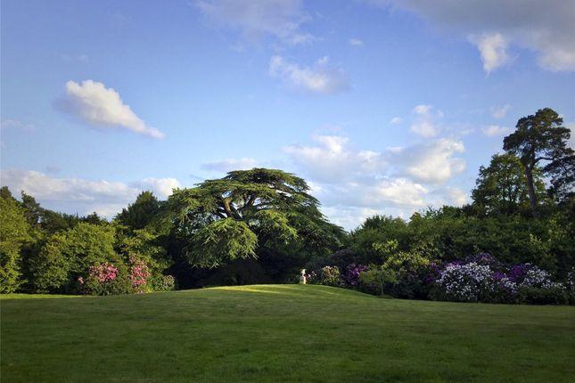 Gardens of St Ann's Court, St Ann's Hill, Surrey KT16