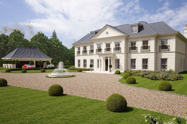 Thumbnail Detached house for sale in Buttersteep Rise, Ascot