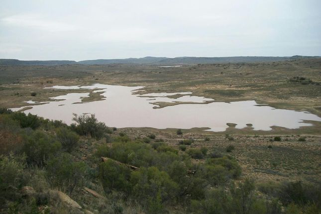 Thumbnail Farm for sale in Venterstad, 9798, South Africa