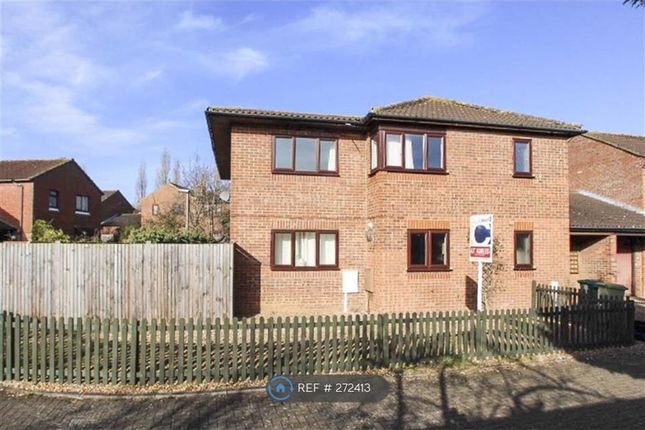 Thumbnail Detached house to rent in Rothersthorpe, Milton Keynes