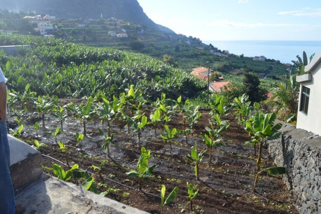 Thumbnail Detached house for sale in Arco Da Calheta, Calheta (Madeira), Madeira