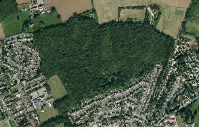 Thumbnail Land for sale in Hawe Lane, Sturry, Canterbury