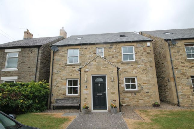 Thumbnail Detached house for sale in Anitas Way, Ireshopeburn, Bishop Auckland