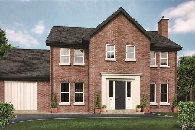 Thumbnail Detached house for sale in 19, Drumlin View, Dromore