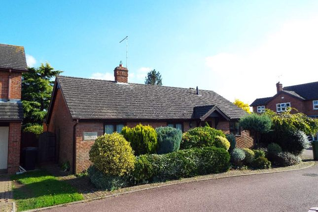 Thumbnail Detached bungalow for sale in St Albans Place, Wollaston, Northamptonshire