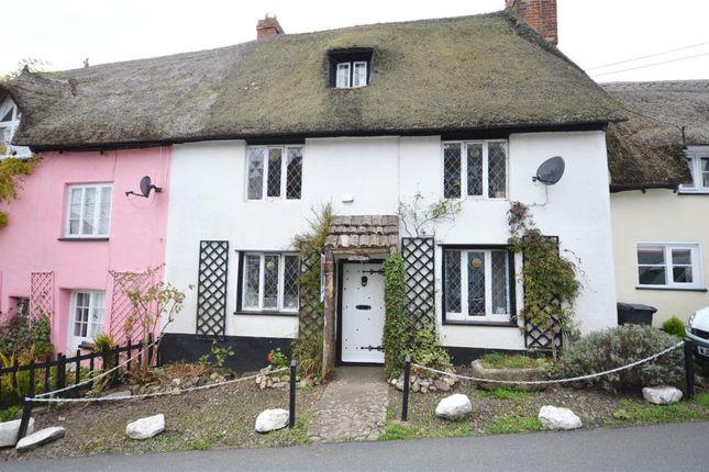 Thumbnail Terraced house for sale in Badlake Hill, Dawlish, Devon