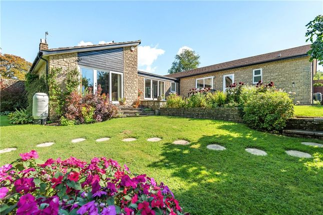 4 bed bungalow for sale in Millfield, Beaminster, Dorset DT8