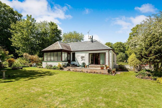 Thumbnail Detached house for sale in Logie, Montrose