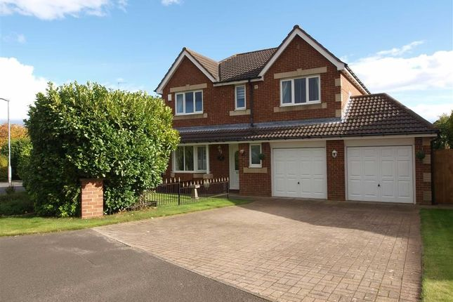 Thumbnail Detached house for sale in Eton Close, Cramlington