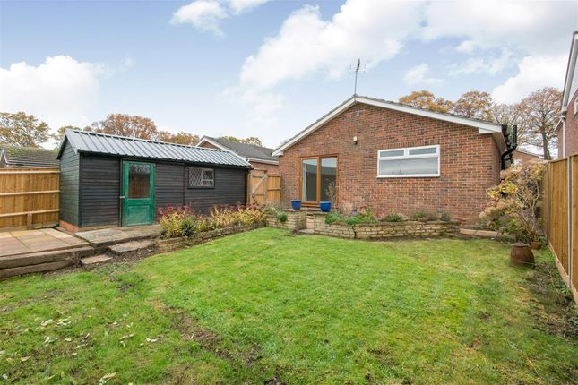 Thumbnail Detached bungalow for sale in Welles Road, Chandlers Ford, Eastleigh