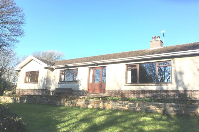 Thumbnail Detached bungalow to rent in Dale Road, Haverfordwest