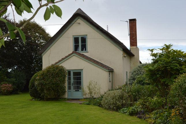 Thumbnail Detached house to rent in Weston, Sidmouth
