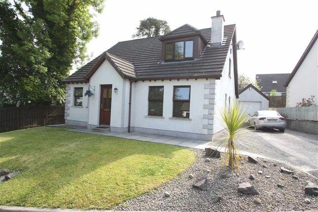 Thumbnail Detached house for sale in Hawthorn Hill, Dromara, Down