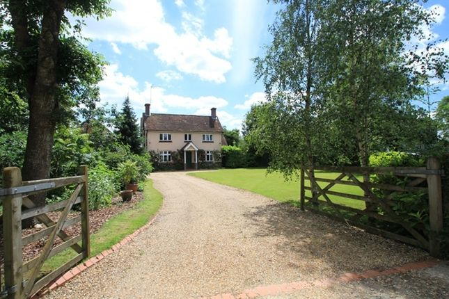 Thumbnail Detached house for sale in Alfold Road, Dunsfold, Godalming