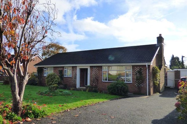 Thumbnail Bungalow for sale in The Paddock, Chepstow