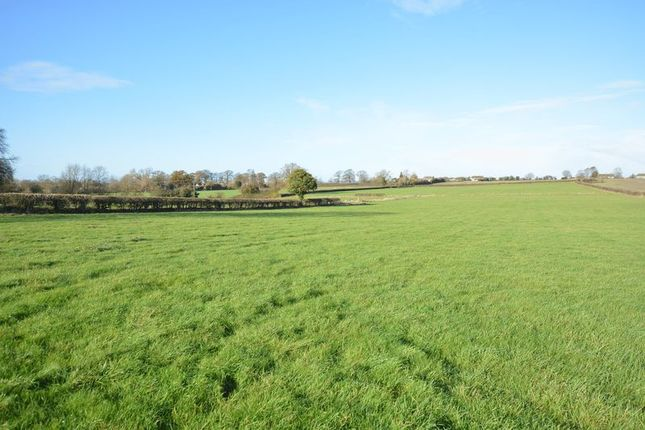 Thumbnail Equestrian property for sale in Springs Lane, Ellesborough, Aylesbury