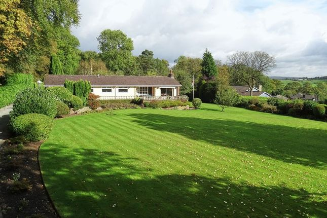 Thumbnail Detached bungalow for sale in Greyswood, Clay Lake, Endon