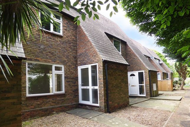 Thumbnail Terraced house to rent in Maplehurst Road, Chichester