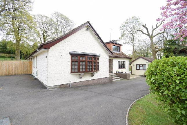 Thumbnail Detached bungalow for sale in Mill Lane, Llanyravon, Cwmbran