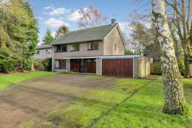 4 bed detached house for sale in Great Barton, Bury St Edmunds, Suffolk