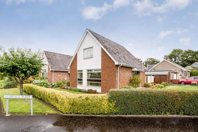 Thumbnail Bungalow for sale in Ogilvie Road, Stirling, Stirlingshire