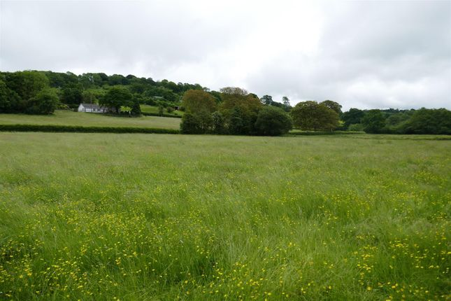 Thumbnail Land for sale in Gwynfe, Llangadog