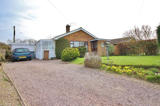 Thumbnail Detached bungalow for sale in Burnt House Road, Cantley, Norwich