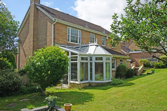 Thumbnail Detached house for sale in Goodworth Clatford, Andover, Hampshire