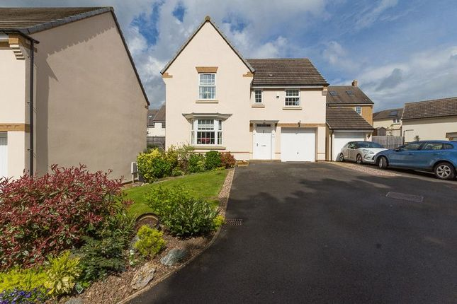 Thumbnail Detached house for sale in Lower Trindle Close, Chudleigh, Newton Abbot