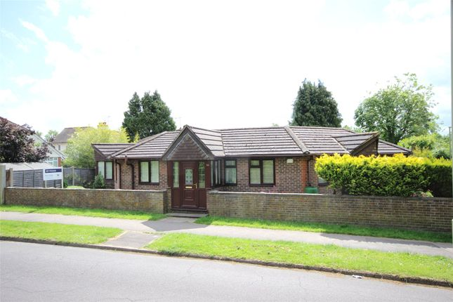 Thumbnail Detached bungalow for sale in Geales Crescent, Alton, Hampshire