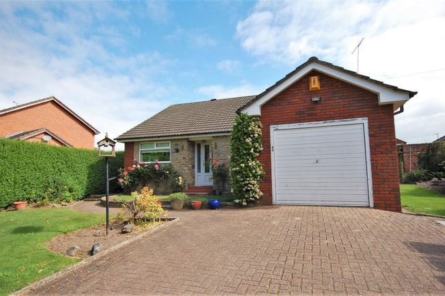 Thumbnail Detached bungalow for sale in Manor Avenue, Crewe