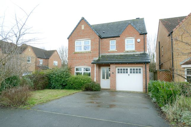 Thumbnail Detached house to rent in Bluebell Walk, Creswell, Worksop
