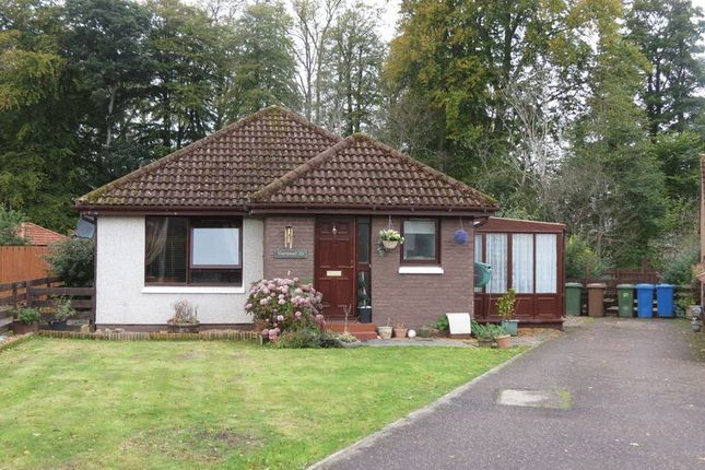 Thumbnail Detached bungalow for sale in Lochlann Terrace, Culloden, Inverness